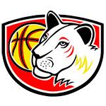 Sokol ZVUS Hradec Králové - logo